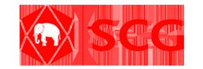 Logo csg